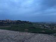 Mdina View 2