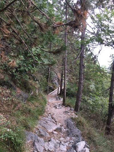 A Trail in Lake Garda