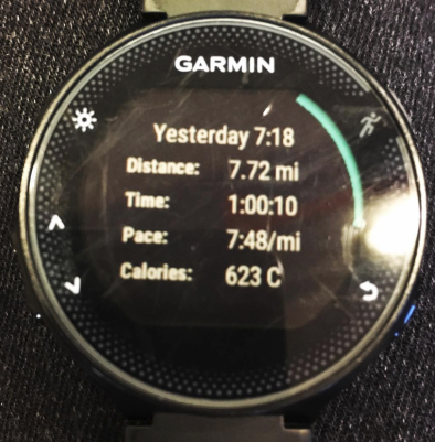 Garmin 235 Screen