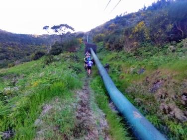 Gas pipe climb...