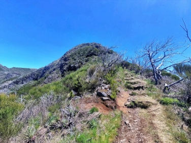 Gradual climbs back up