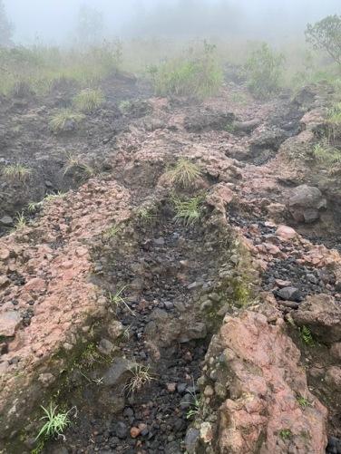 Lava rock terrain