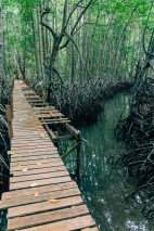 The first of many perilous bridges we'd encounter