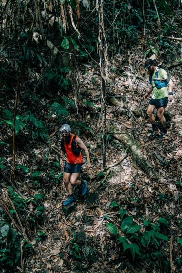 Steep jungle descents